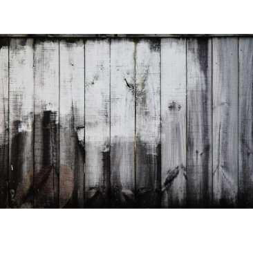 Graffiti Exhibition-1